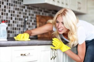 Domestic Cleaning