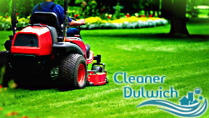 grass-cutting-dulwich