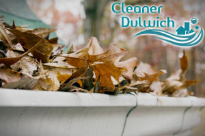 gutter-cleaners-dulwich